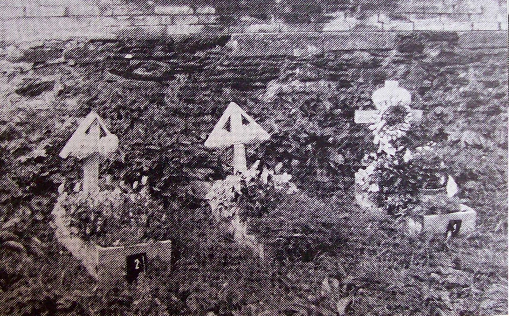Dětské hroby reemigrantů z Rumunska, Ostrov-Malšín